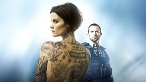 blindspot cover picture